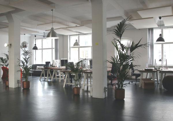 office-nl-mini